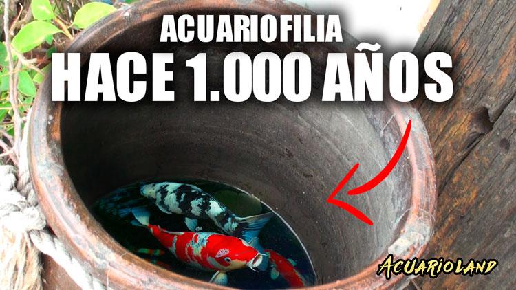 Origen acuariofilia