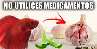 Medicamentos para peces de acuario